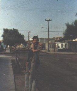 Arica, 1984.
