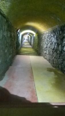 tunel polanco